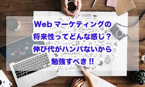 Webマーケティングの将来性ってどんな感じ?伸び代がハンパないから勉強すべき!!