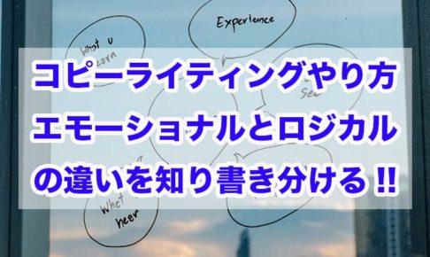 コピーライティングやり方|エモーショナルとロジカルの違いを知り書き分ける!!